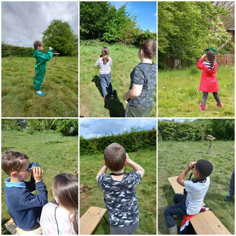 And watched out for the birds, bees, butterflies and damselflies!