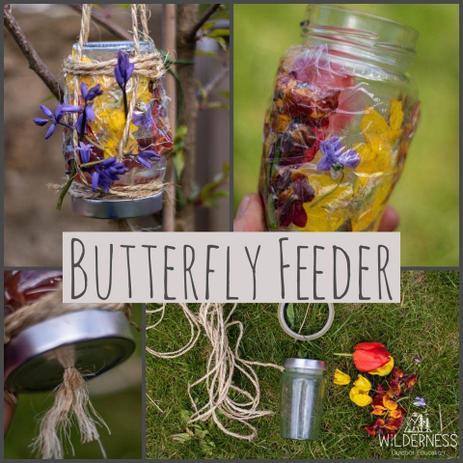 Butterfly Feeder for summertime