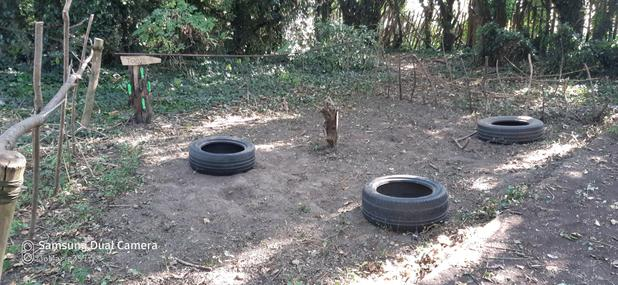 Tyres to sit on while digging holes