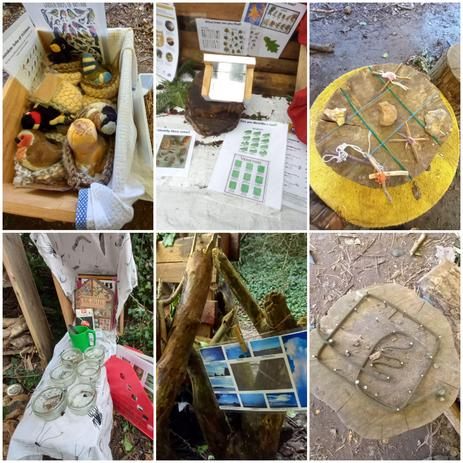 Some of the information and activities the children use