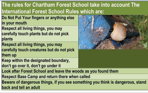 Forest School Rules aim to ensure learning remains safe