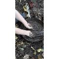 Making Mud