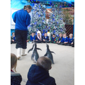 Meeting the penguins