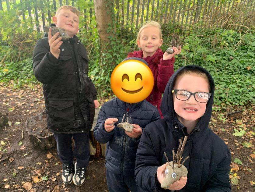 Our prickly hedgehogs!