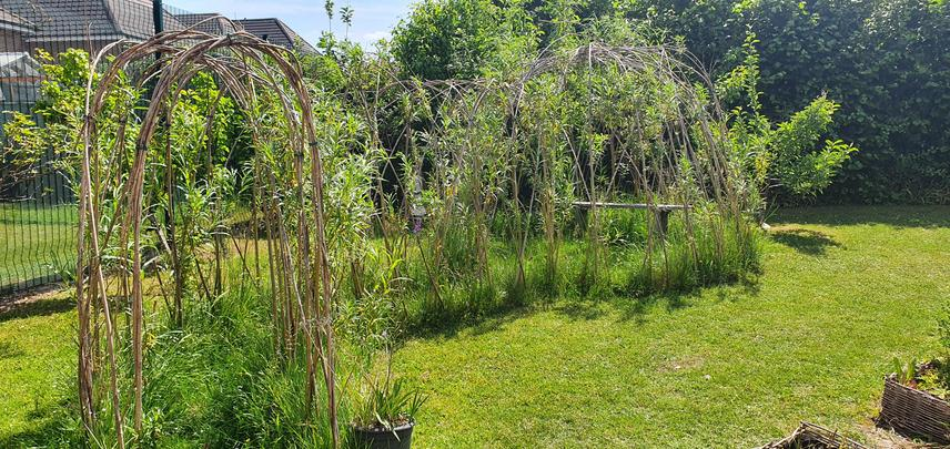 Our willow structure is a peaceful place to rest and pray.