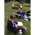 Reading in the sunshine