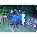 Exploring our bug hotel