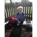 We even had seedlings from someone's allotment!
