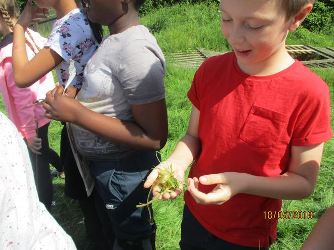 During outdoor learning day. on 18th May
