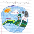 Science - The water cycle