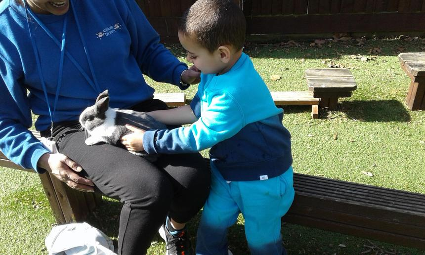 Shows care and concern for living things and the environment