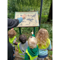 whilst in the park can we see any of the animals on the board?