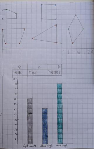 A super bar graph Sophie! What do you notice?