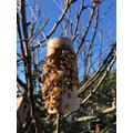 A bird feeder