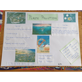Max's pollution poster