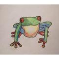 Ella's tree frog