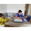 Harley and Lawson researching penguins together.