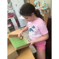 Matilda working on her habitat