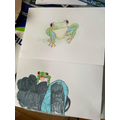 George and his Mum has drawn tree frogs