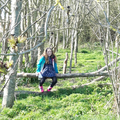 Tara's woodland adventure