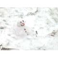 Harry G's Snowman.