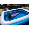Matilda playing in her pool