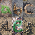 Eva's alphabet made from natural materials. They are fab!