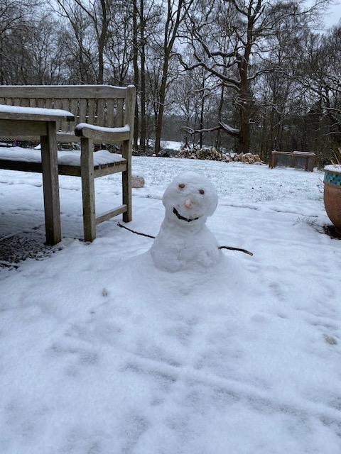 Steve the Snowman