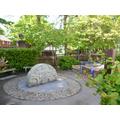 David Addy's Garden