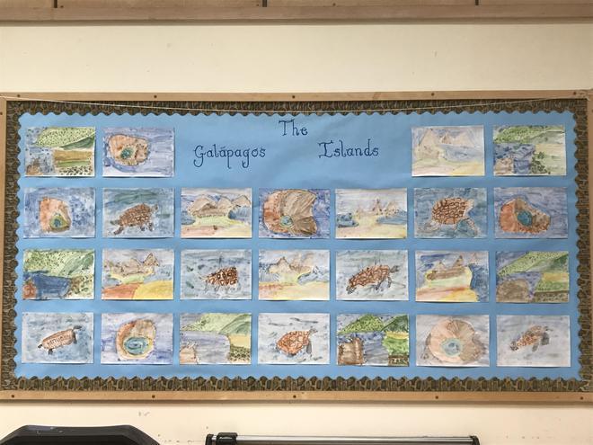 Galapagos Island Watercolours
