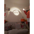 Emily's minibeast shadow puppets 1