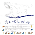 Bailey's brilliant shark fact file