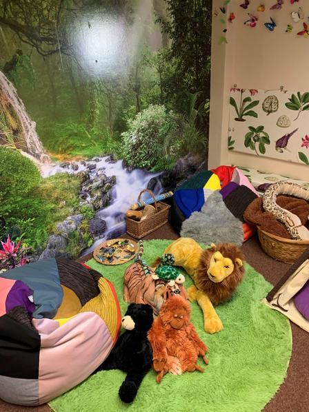 Our Amazing Rainforest Sensory Room