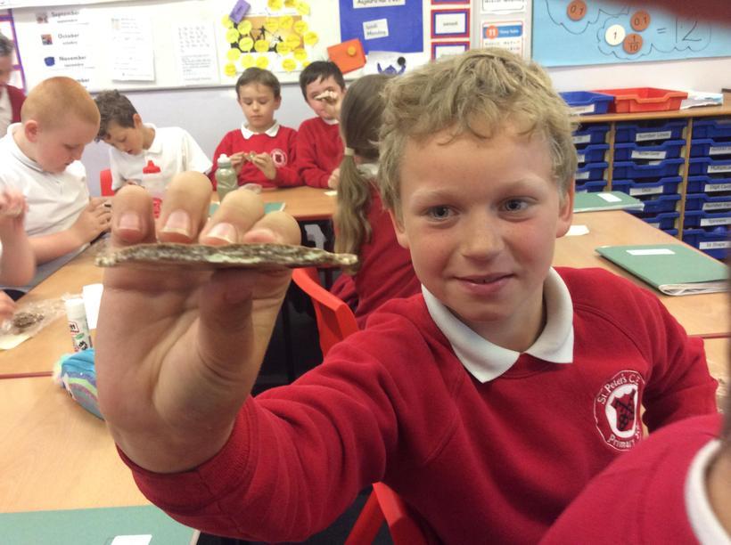 Look, Oscar made sedimentary rock.