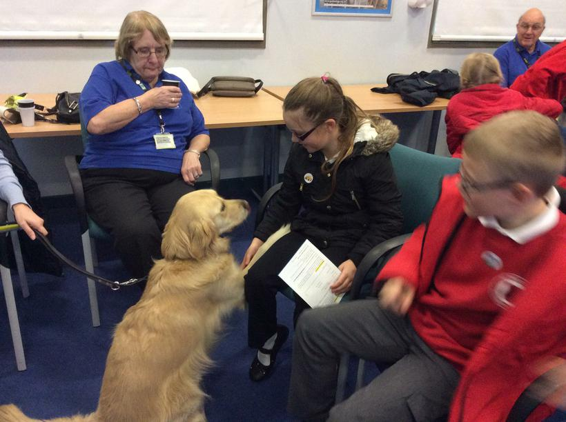 Meeting the guide dogs