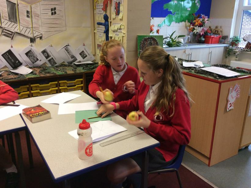 Our favourites were pink lady apples