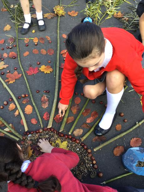 Patterns of leaves and conkers