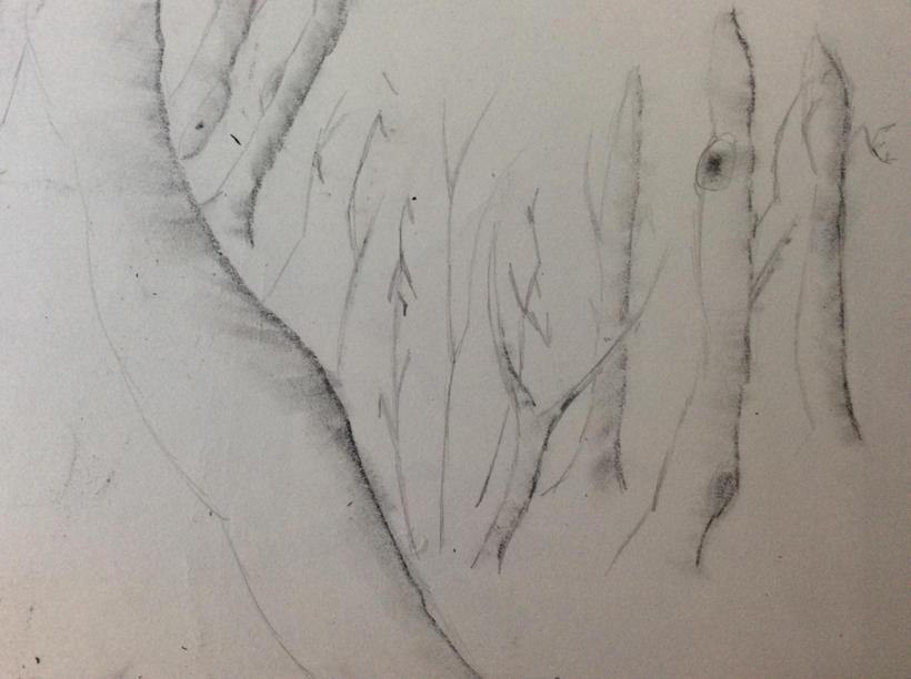 Y5 sketchbbok