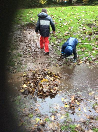 Using leaves to make a dam.