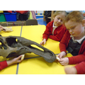 Exploring dinosaur fossils in Year 2