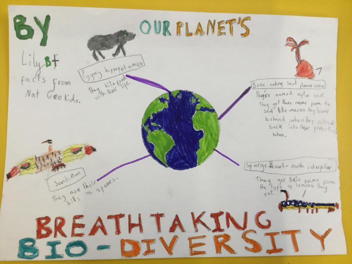 Diverse Planet Competition winner Lily Year 3