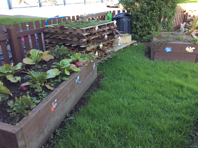 We have developed an eco area.