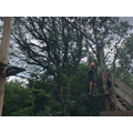 High ropes 3