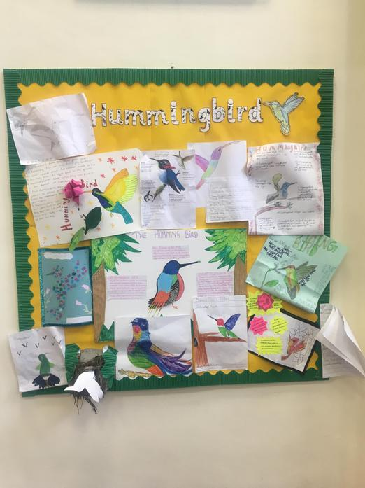 Year 5 were set homework on our class bird: Hummingbird. Here are some of the wonderful pieces of work our class created!