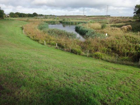 Horsbere Brook, Gloucester