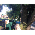We went on an owl hunt in the garden