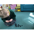 We made caterpillars aof different lengths