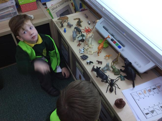 Finding out about animals in our world