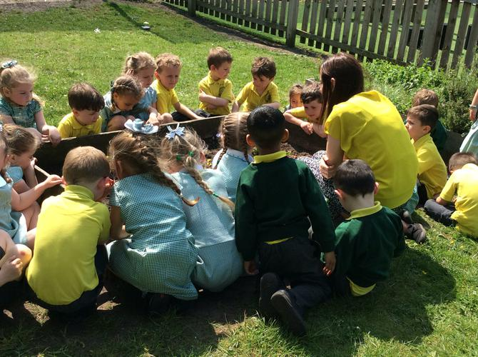 We observed our butterflies in the flower garden.