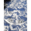 Libby's Snow angel:-)